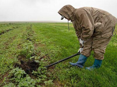Фермеры Бурятии будут выращивать редкие лекарственные растения Восточной Сибири