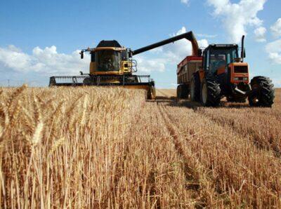 Аграрии из Красноярского края получили от МСП Банка льготный кредит на 190 млн рублей