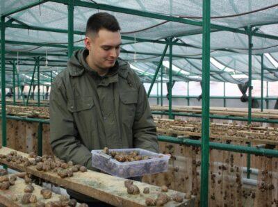Ставропольский «Улиточный сад» расширяет производство