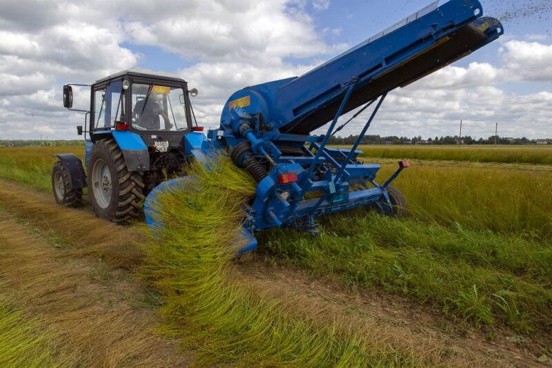 Кабмин разработал меры государственной поддержки льняной отрасли