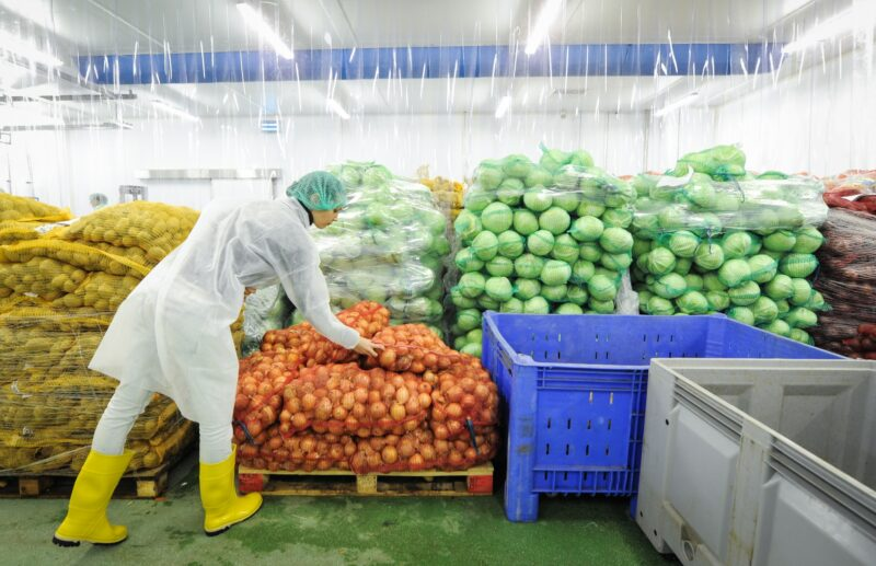 Кабмин утвердил план мероприятий по обеспечению продовольственной безопасности