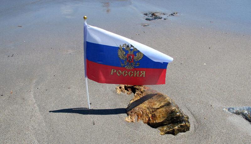 Россия продолжает пересмотр СИДН