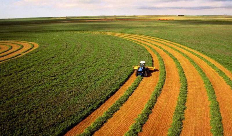 Собственники земель сельхозназначения займутся повышением плодородия почв