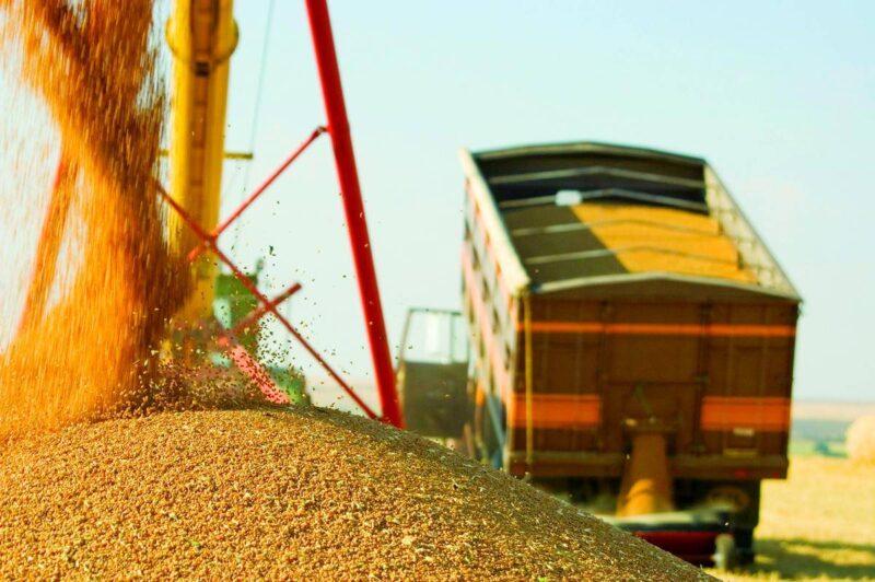 Фьючерс на российскую пшеницу установил очередной ценовой рекорд