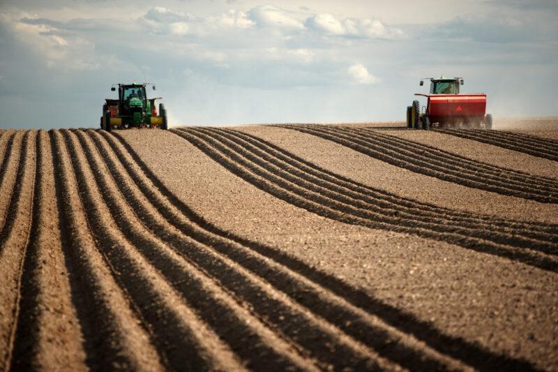 В Казахстане запретили продавать или сдавать в аренду сельхозземли иностранцам