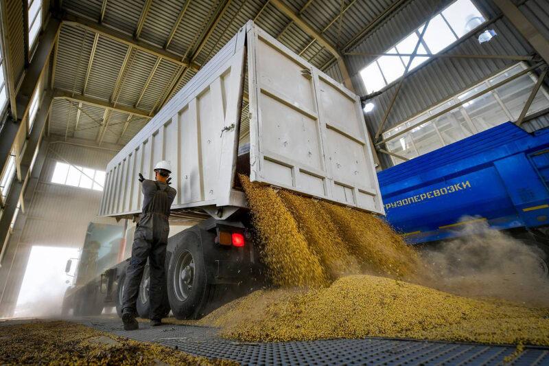 Кабмин введет плавающие пошлины при экспорте зерновых из РФ