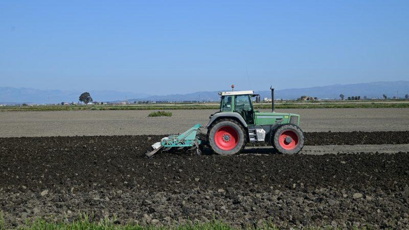 Узбекистан арендует российские земли сельхозназначения