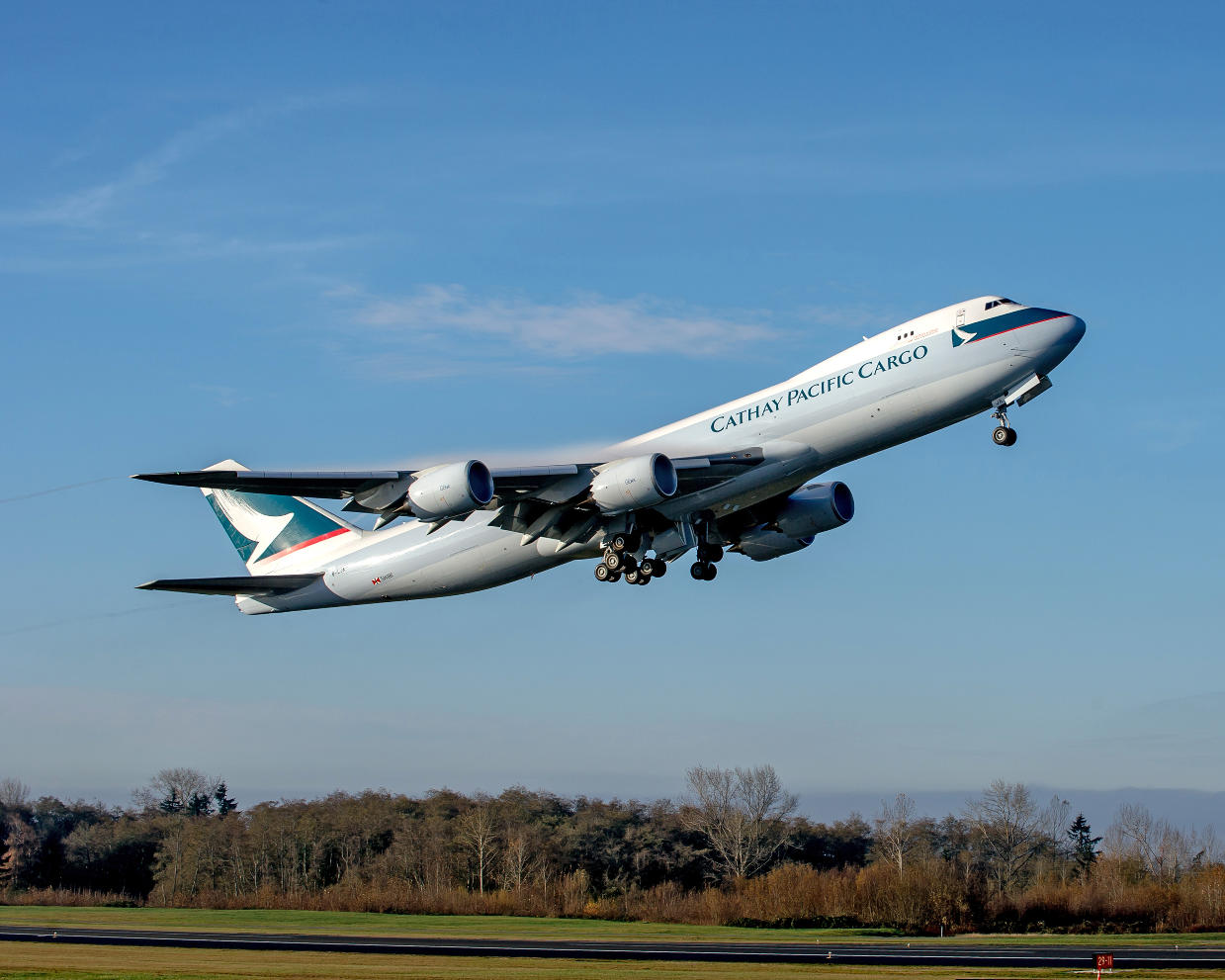 Asia Pacific airlines see strong cargo growth