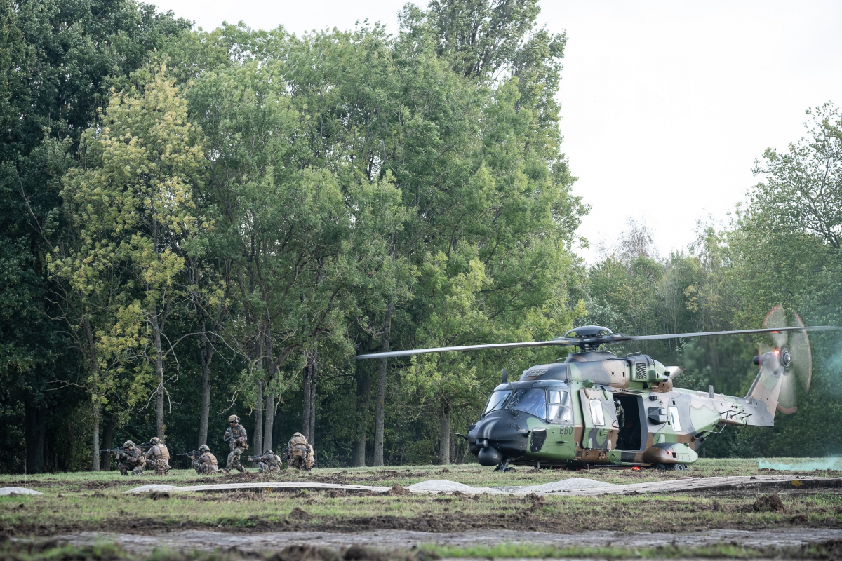 Les forces terrestres en action