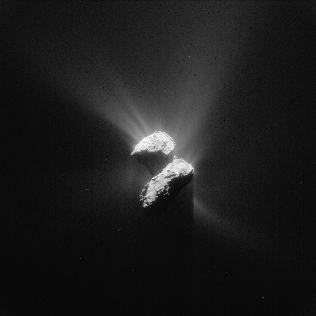 Deséléments-clé de la vie dans la chevelure de la comète Tchouri