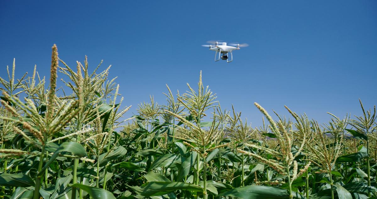 DJI dévoile un drone pour le secteur agricole