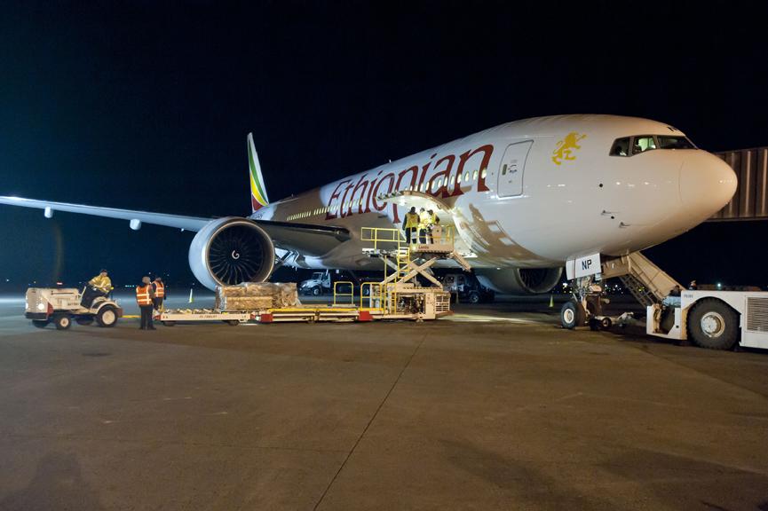 Air Djibouti, Ethiopian Airlines et le port de Djibouti forment un partenariat de fret aérien