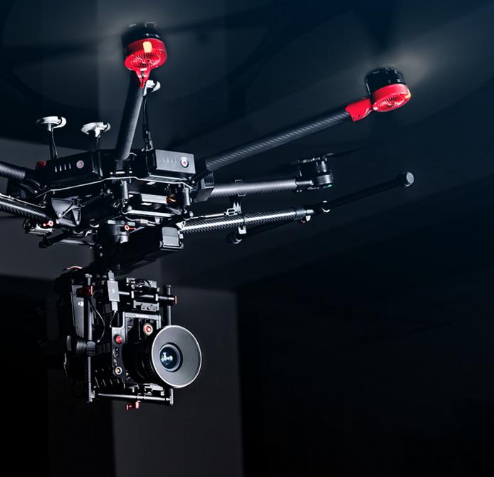 De l'IA et des drones pour surveiller la faune