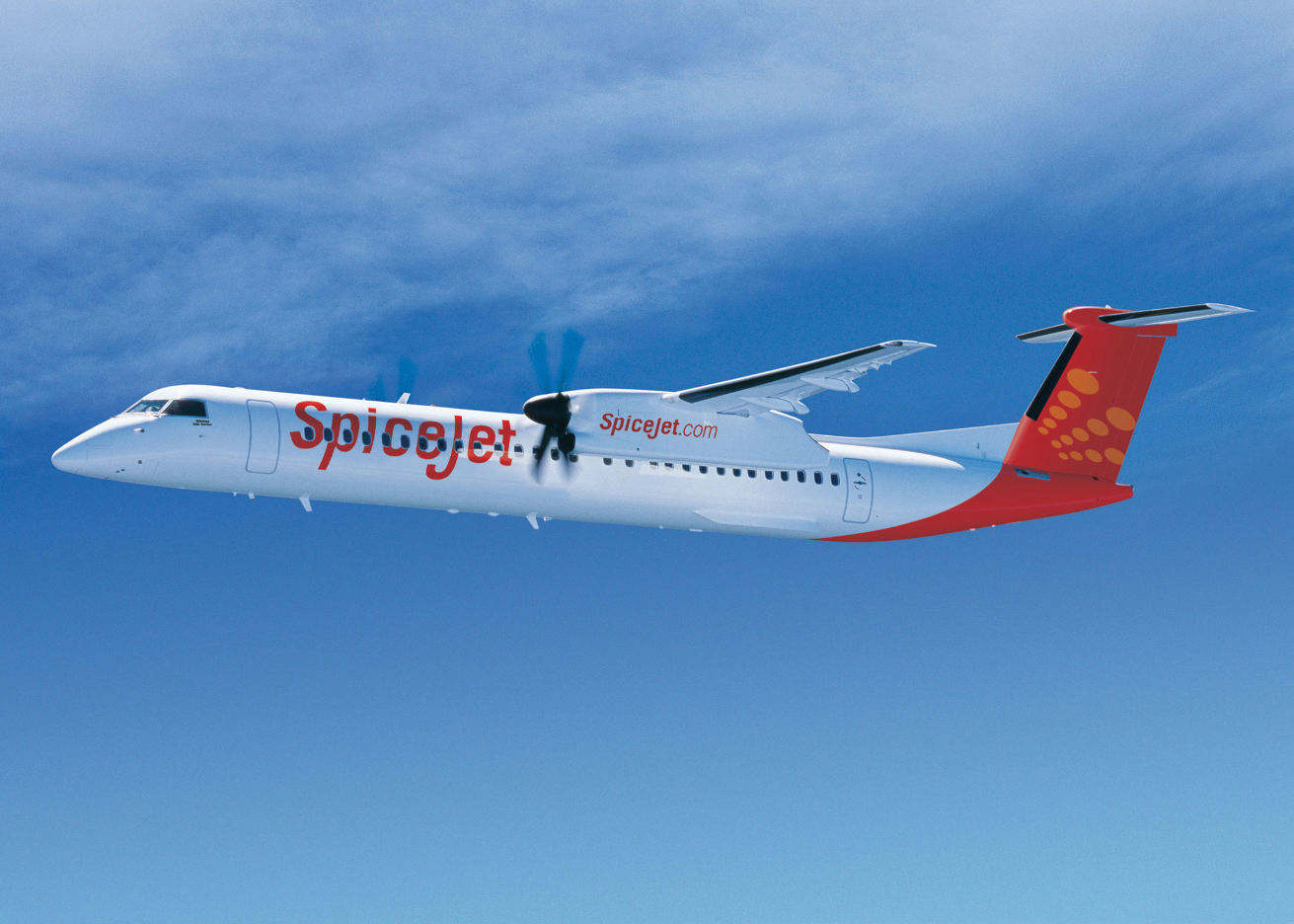 SpiceJet completes India's first biofuel flight