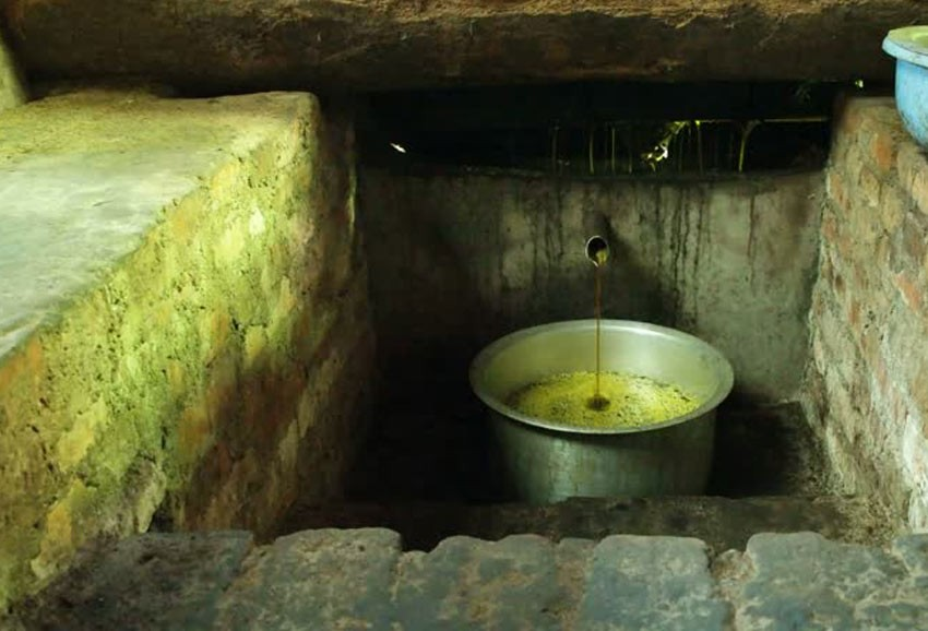 Nepali cooking oil industries in crisis