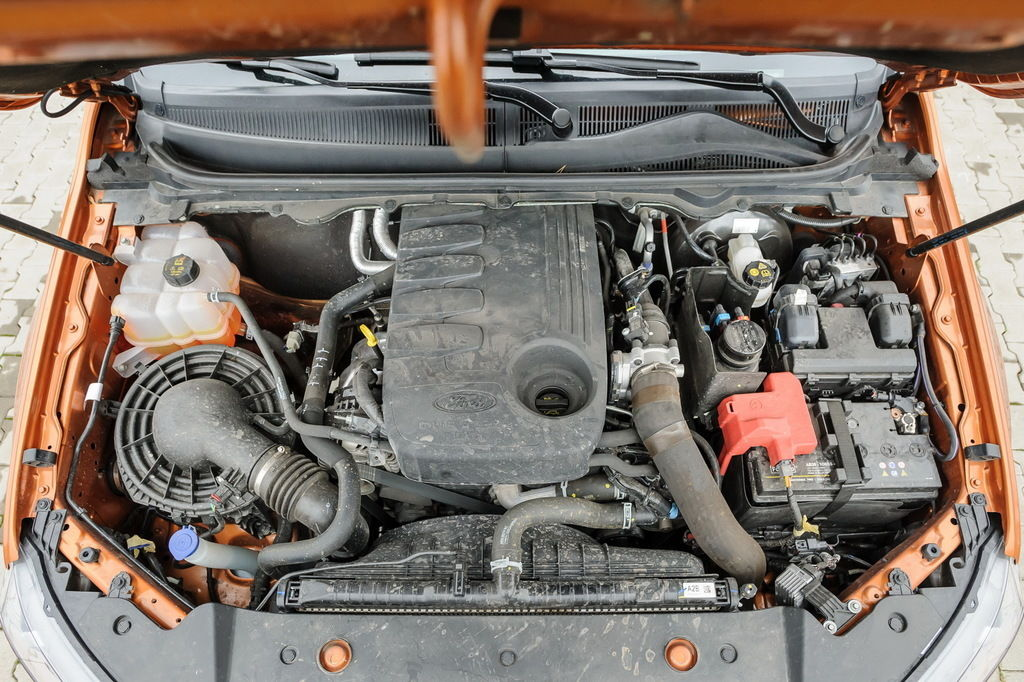Content ranger motor 04