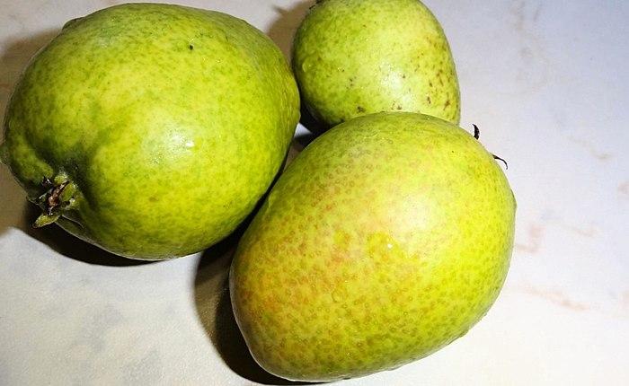 ჩემი ბოსტნეული და ხილი იგი გრძნობს, დიდი. მზად ზამთრის! ფოტო ადრე და გაშრობის შემდეგ!