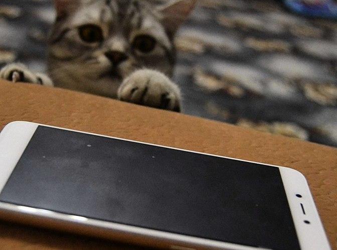 Tout ce que vous devez savoir sur le budget chinois de smartphone Xiaomi Redmi 4x - LIRE ICI! Caractéristiques, sans trop de
