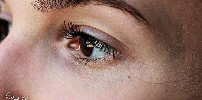 Të reja! Nuk bojë për vetulla Vivienne sabo Mon Përgjithshme efektin e një vëllimi i madh? Të hollësishme të shqyrtimit, fotot PARA dhe PAS, përbërjen.