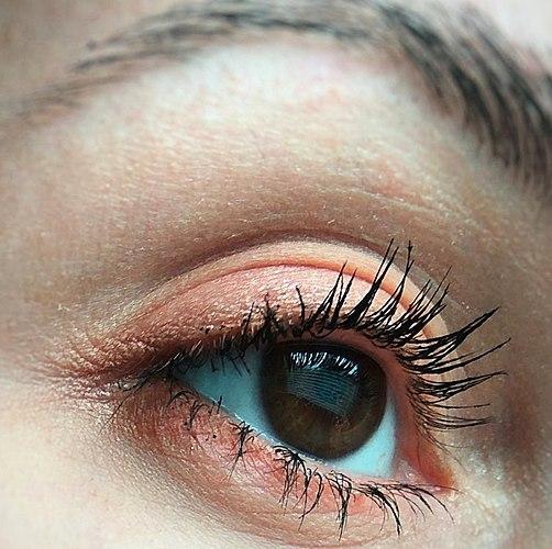 Concurso палетка com o doce nome de Orange Velvet (bolo de Laranja/laranja veludo) + свотчи