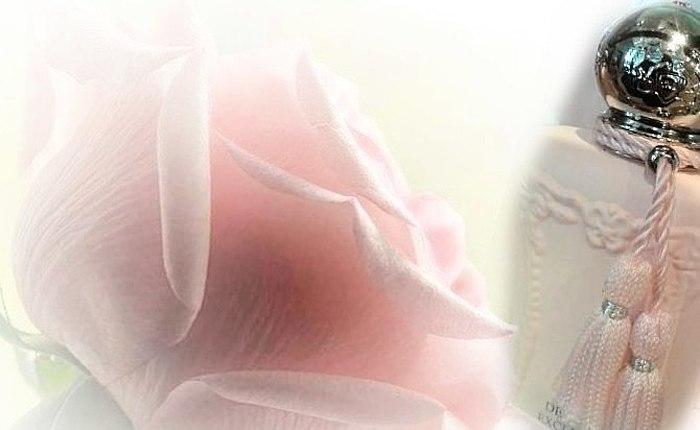 歌颂女王的花和感性的豪华的东方香。 独特的法国香水。