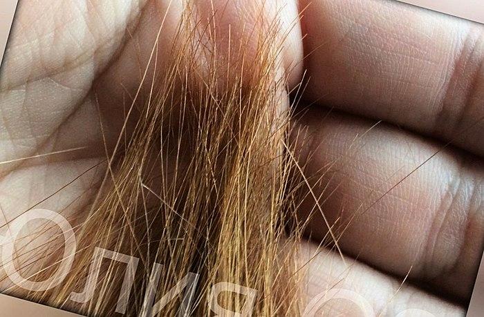 אורך השיער מתחת הישבן, להסתפר לפני תו. אני יכול לעשות את זה. תספורת במספריים חמות על יבש וגם על שיער רטוב. התוצאה לשנה.
