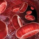 Доноров заменит искусственная кровь