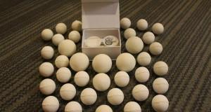 Технологичные 3D-печатные яйца черепах помогут бороться с браконьерством
