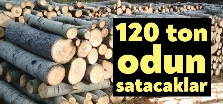 Kocaeli Büyükşehir 120 ton odun satacak