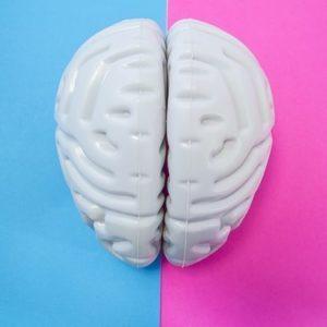 Окситоцин: гормон любви или гормон кризиса?