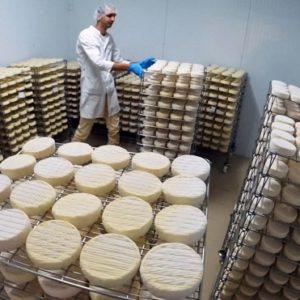 ГОСТ всемогущий: сделанный не по ГОСТу сыр запретят называть российским