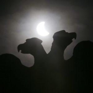 Слон в посудной лавке: как участие государства вредит экономике России