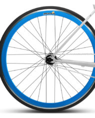 Wheel-Mango-SS-Front-Web-Blue