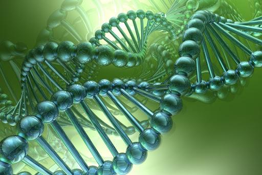 В школах Москвы приступят к изучению генетики