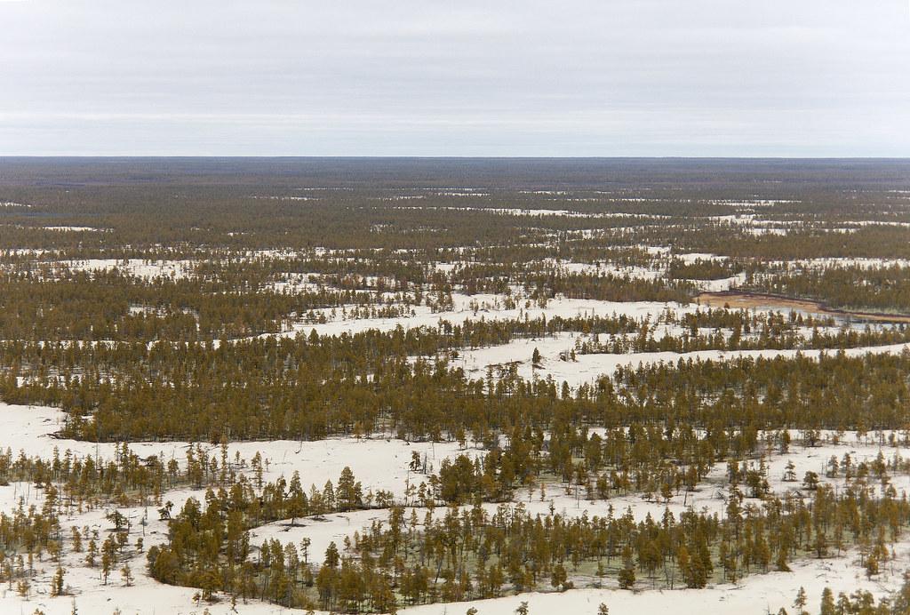 Якутский «Водоканал» отказывается принимать талые воды: партия «Родина» обещает разобраться