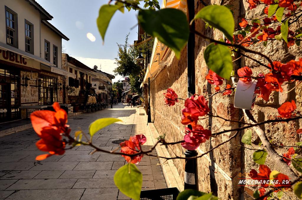 Турция, Анталья, цветущий  ноябрь