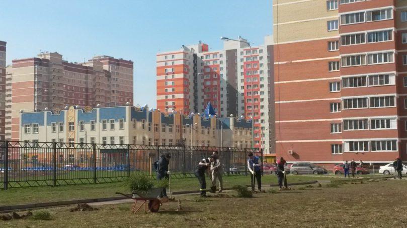 Управленцы УК «ДОМЖИЛСЕРВИС» рассказали о постоянной обратной связи с жильцами