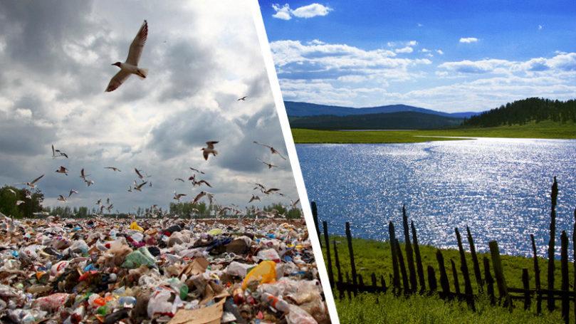 Мособласть выбрала верную модель управления в области охраны окружающей среды
