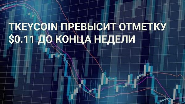 Внимание инвесторов способствует росту криптовалюты TKEYCOIN