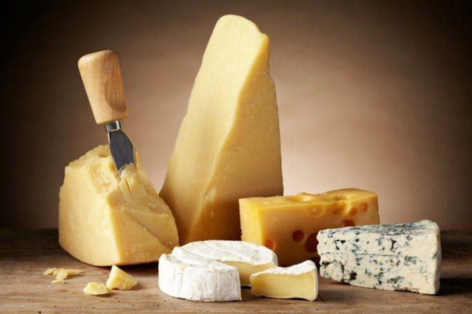 Сельхозхолдинг «АгриВолга» анонсировал создание сырного кластера на территории Ярославской области