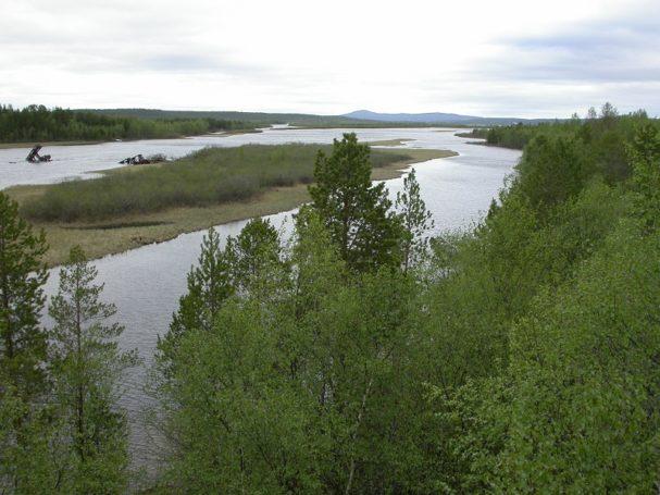 Российские и норвежские экологи встретились в Пасвике