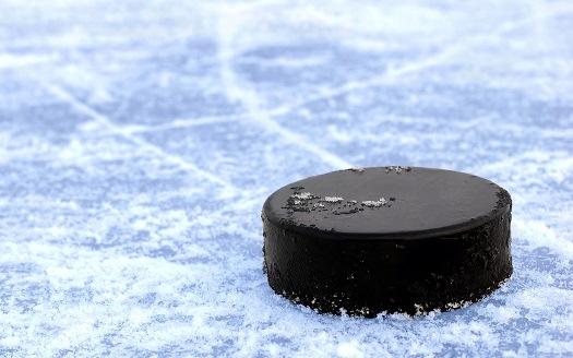 Мировые звезды сыграют в хоккей на полюсе