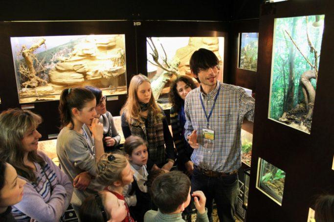 Наибольшей популярностью у участников программы «Музеи — детям» пользуется Дарвиновский музей