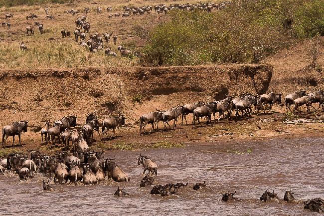 Туры в Кению: на любой вкус и кошелек