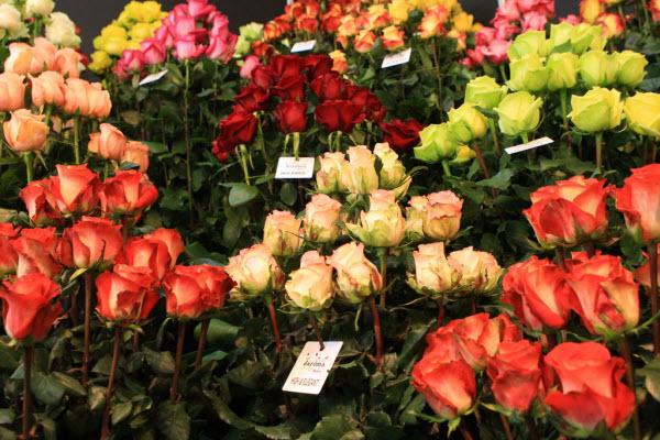 Об особенностях сервиса доставки цветов в России рассказали эксперты Flora Express и CloudPayments