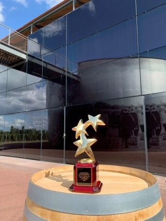 Фильму The art of making wine присуждена премия Award of Excellence на кинофестивале в США