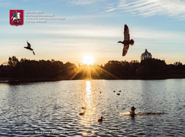 Экологическая выставка Департамента природопользования и охраны окружающей среды города Москвы