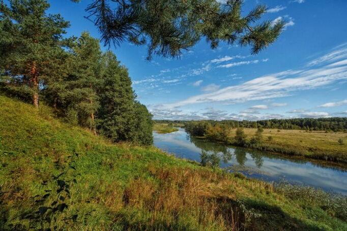 В Ивановской области под руководством Станислава Воскресенского люди стали чаще умирать
