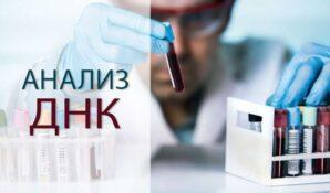 В России сертифицировано первое производство по выпуску наборов для установления родства и идентификации личности