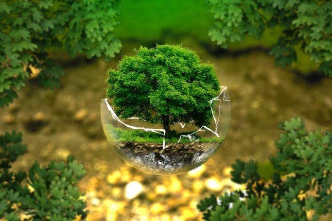 Экспертная комиссия рассматривает конкурсные экологические проекты в Москве